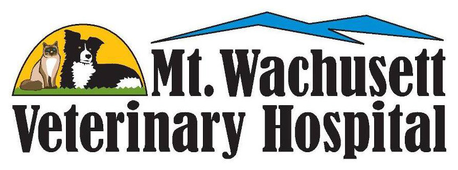 Mt Wachusett Veterinary Hospital